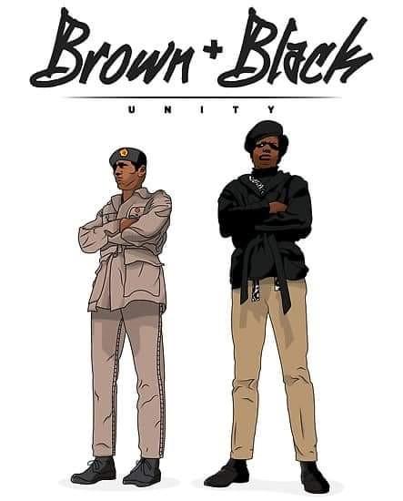 Black and Brown Solidarity